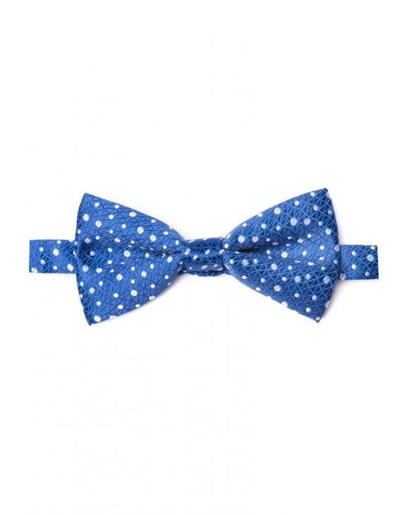 V11 POIS PAPILLON IN BLAU